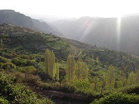 Rondreis Jordanië - Dana - Saffraan Reizen