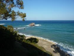 cypr zee