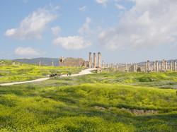 jordanie jerash