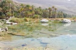 Oman Wadi Bani Khalid2