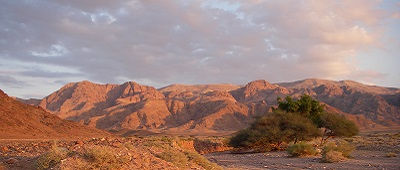 Wadi Feynan, Jordanië - Saffraan Reizen