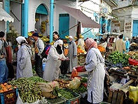 Rondreis Marokko Noord privé - Saffraan Reizen