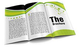 brochure1.png