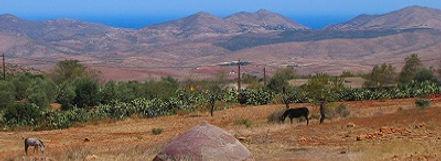 marokko Rifgebergte Saffraan Reizen