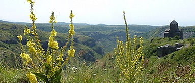 Armenie Fort Amberd Saffraan Reizen