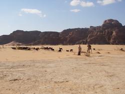 jordanie wadi rum2
