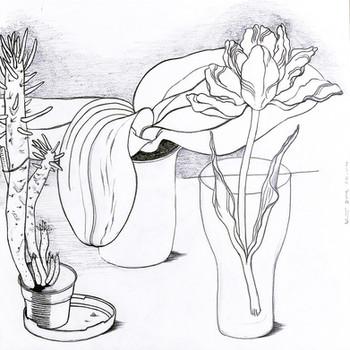 pencil on paper 30/30 cm