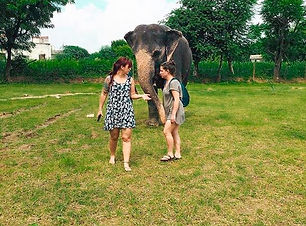 Day With Elephant 🌧️🌧️☔☔🐘 Let us know in comments.jpg