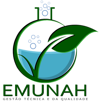 EMUNAH PROJECT 5.png