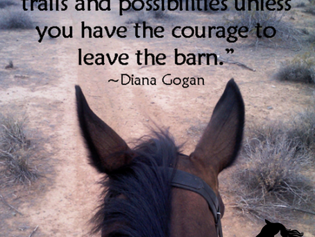 Courage to Leave the Barn