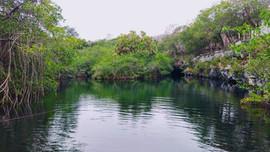 Eine offene Cenote