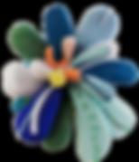 cactus fleur detoure.png
