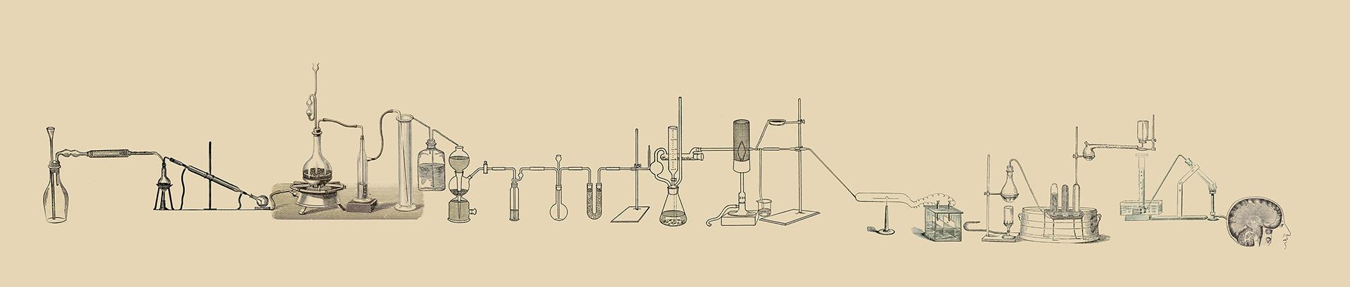 lab-512503_v3.jpg