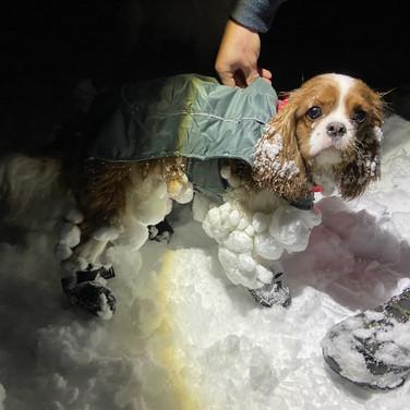Mantel oder nicht? Thema Schnee