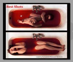 BEST SHOT. 2011
