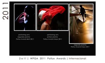 WPGA PREMIOS 2011