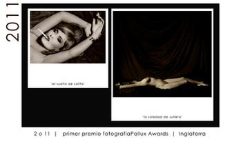 POLUX AWARDS 2011 (UK)