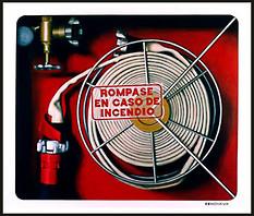 'solo en caso de incendio'