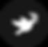 Spirit icon.png