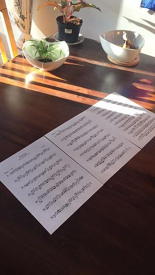 Outward videogame music soundtrack composer. Compositeur musique trame sonore jeu vidéo Outward.