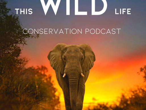 Conservation Podcast