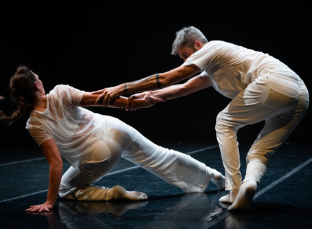 Reflections on the FACT/SF Summer Dance Festival