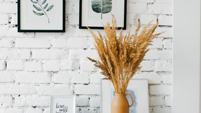 Home decoration with indoor plants