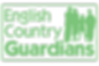 Logo-Solid-V1.1-(No-Tag).png