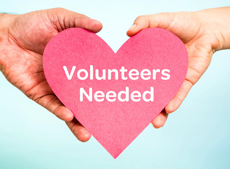 Our Next Volunteer Training Is Coming Up Soon!