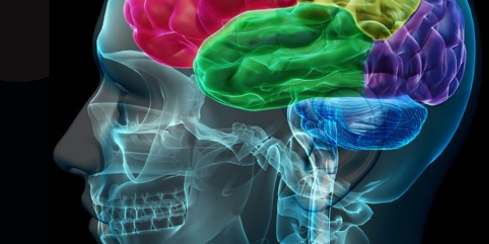 How Emotions are Made: The Secret Life of the Brain.