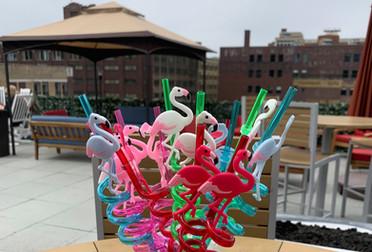 The Rooftop Bar Slushy Straws