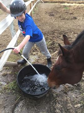 Horse watering.jpg