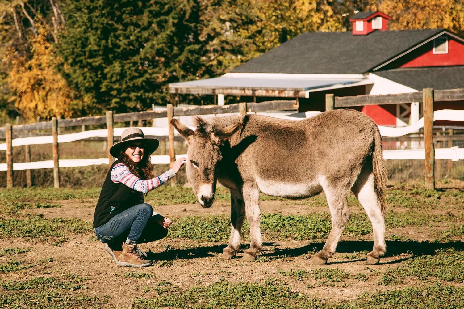 Animal Sanctuary | British Columbia | Arion Therapeutic Farm