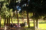 DSC_0174_edited.jpg