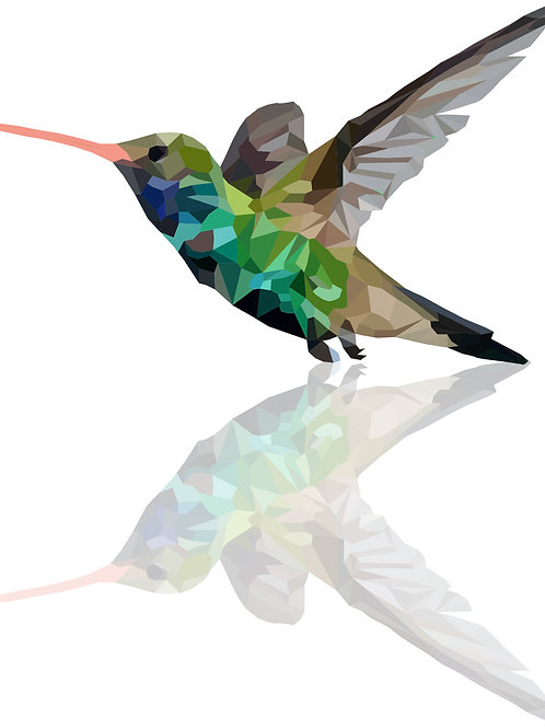 Low Poly Humming Bird