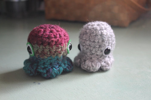 Octopus- Baby