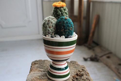 Cactus -Egg Drop Pot