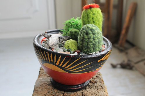 Cactus- Sunrise Pot