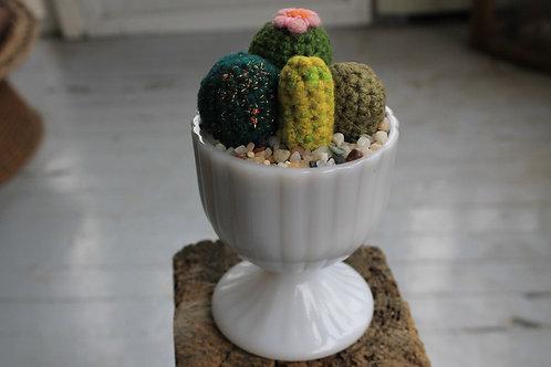 Cactus - Goblet Pot