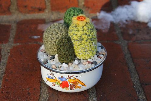 Cactus- Soup Bowl