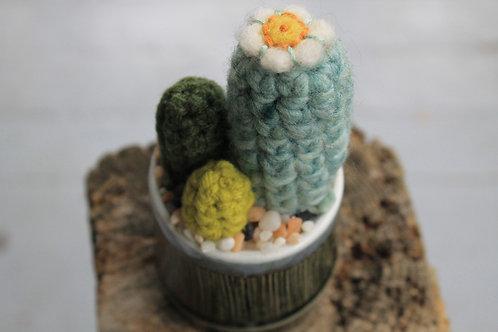 Cactus- Mimic Bamboo Pot
