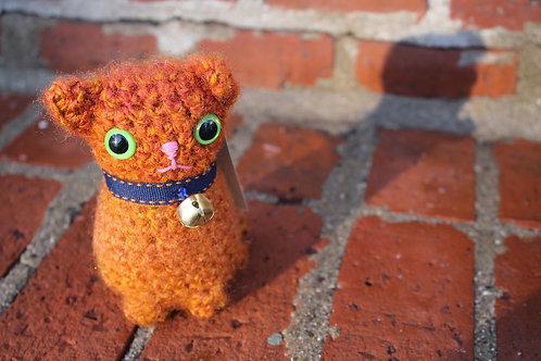 Cat-Orange2