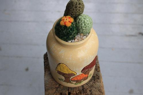 Cactus - Mushroom Pot