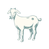 goat_001.png