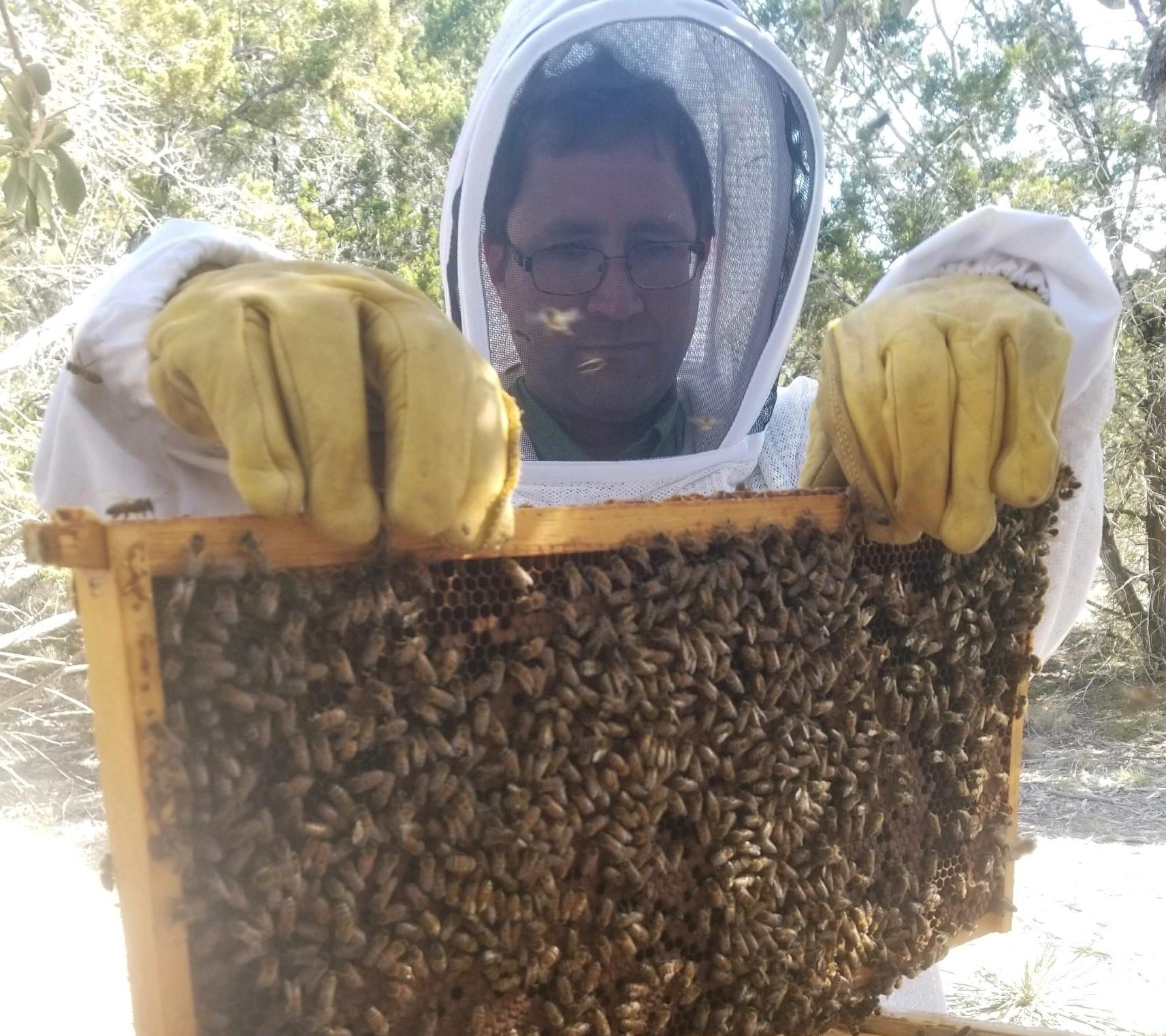 Foundations in Beekeeping