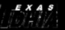 texas-dhia-logo-png.png