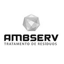 AMBSERV.png