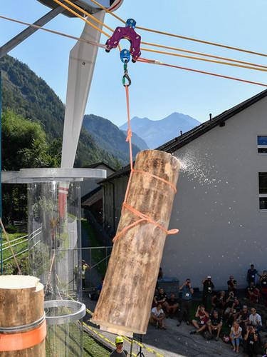 Vorführung Lasten bewegen in der Baumpflege