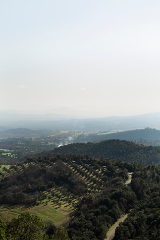 May 3, 2019 - Ravi, Italy - 003.jpg