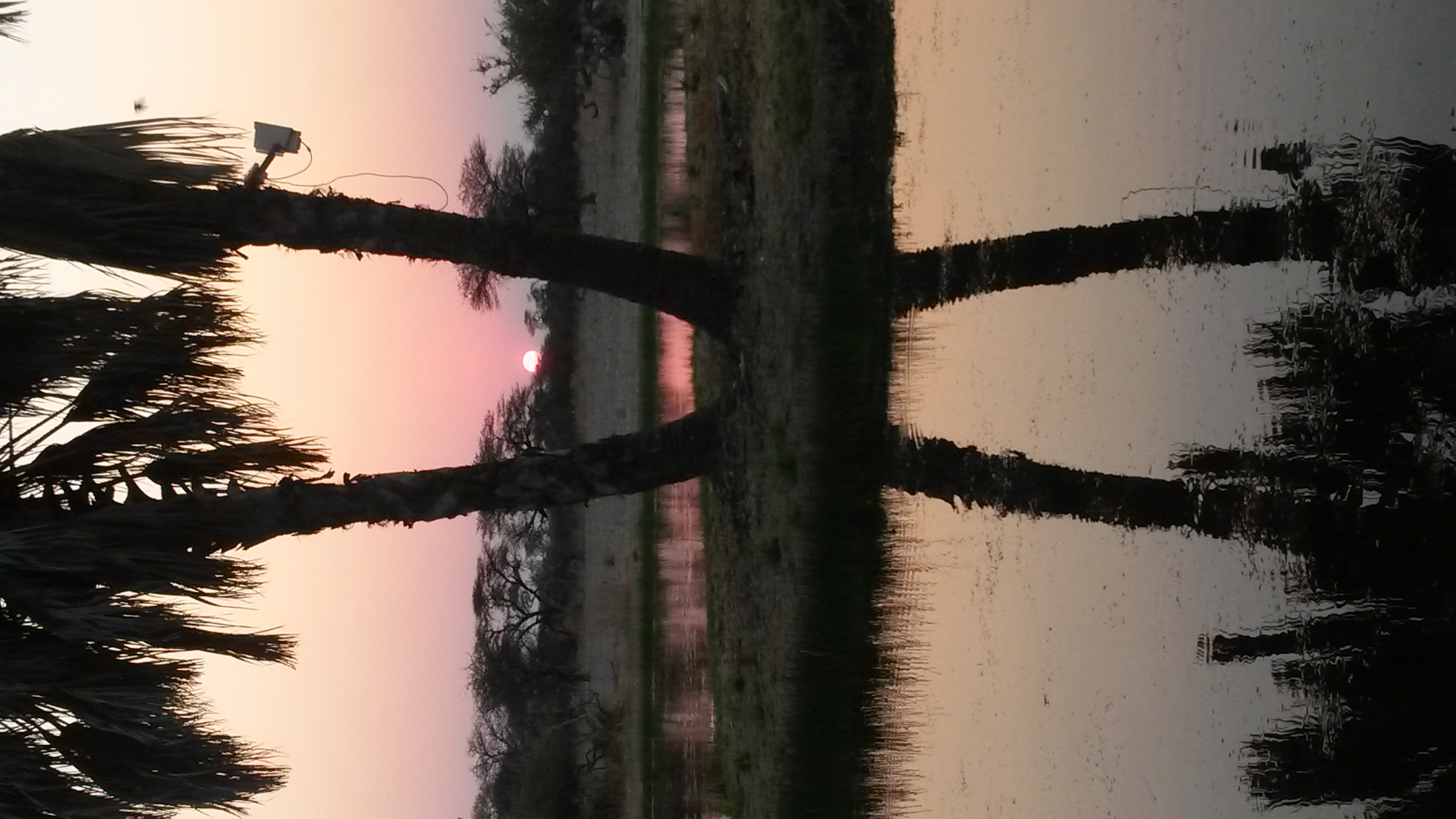 10-Sunset in Onguma - Copy